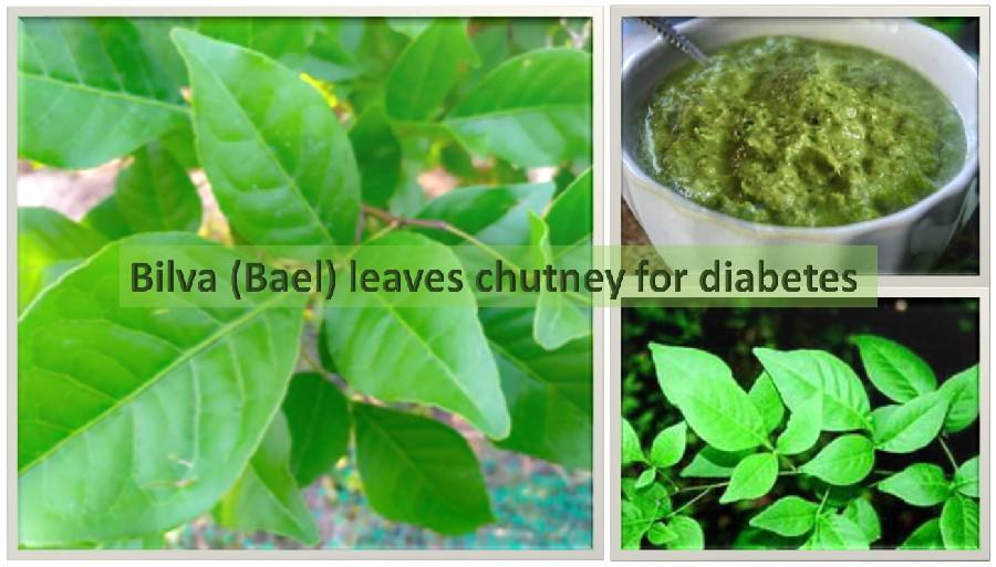 Bilva leaves chutney