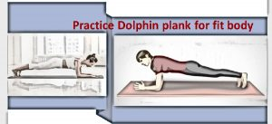 Dolphin plank pose