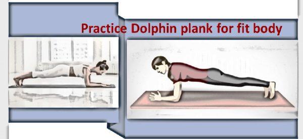 Dolphin plank pose