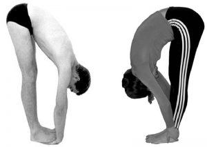 Padahastasana Forward bend pose