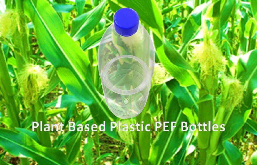 Plant based biodegradable bottles