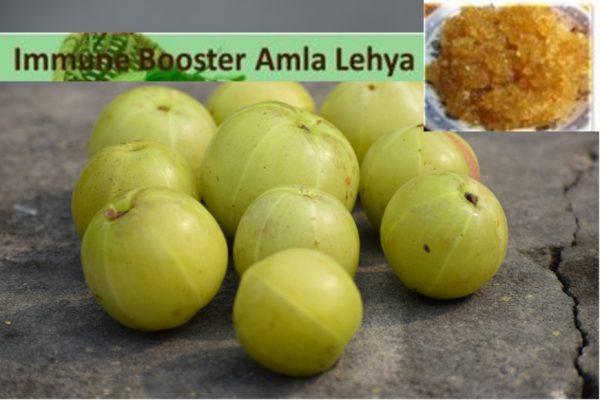 Immunity booster Amla Indian gooseberry lehya
