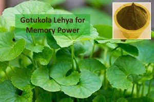 Gotukola Lehya for brain health
