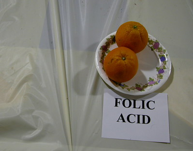 Top 10 facts about folic acid your women patients should know