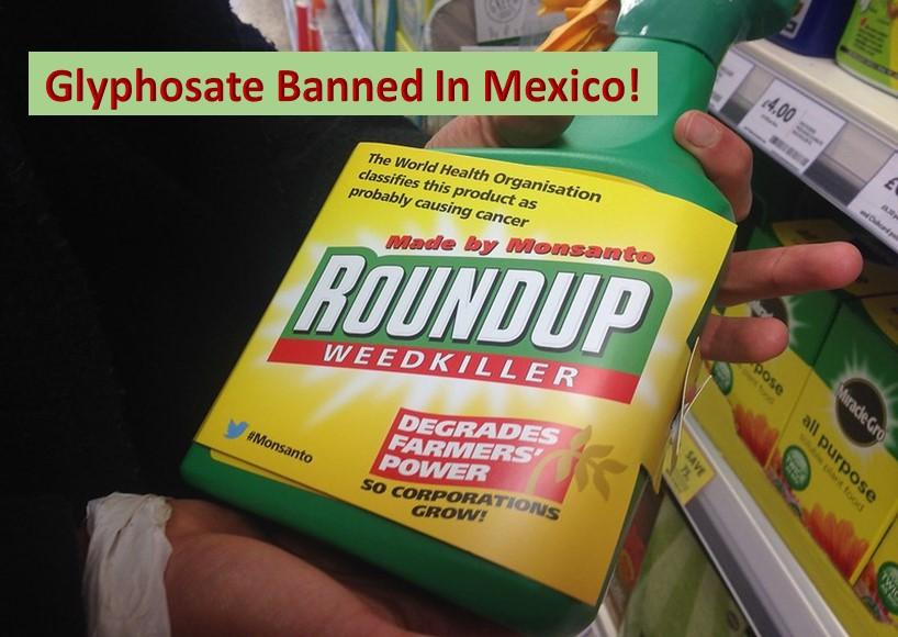 Mexico bans glyphosate