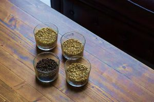 Nutrition and health benefits of sattu