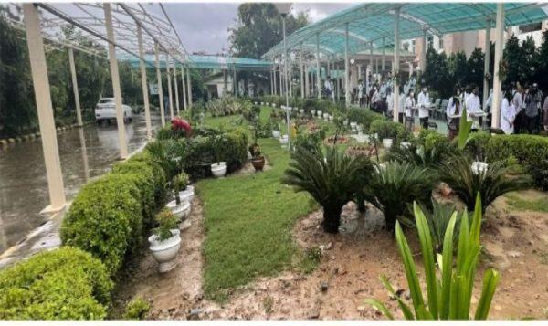 Ayurveda Nutri Garden